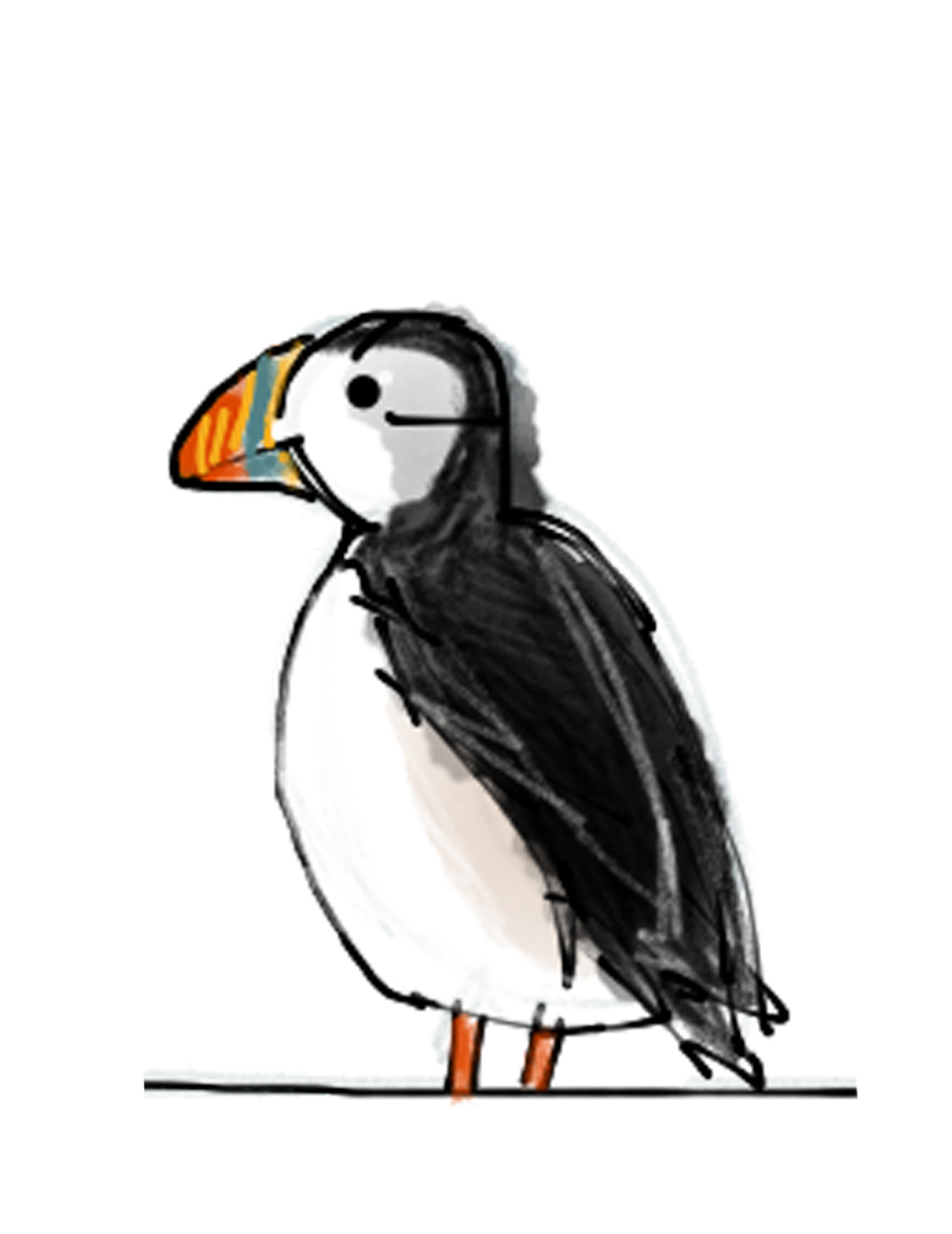 100 crazy puffin facts iceland defrosted